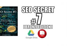 SEO Secret #7 (Bronze Edition) PDF