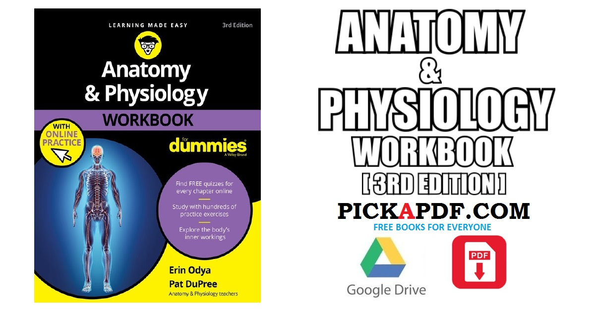 Anatomy and Physiology Workbook PDF Free Download [Direct Link]