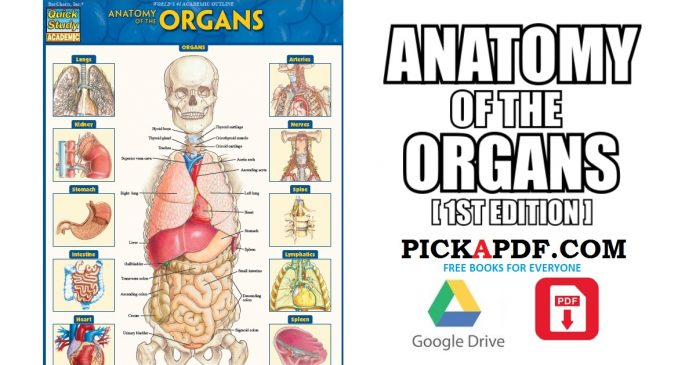 Anatomy of the Organs PDF