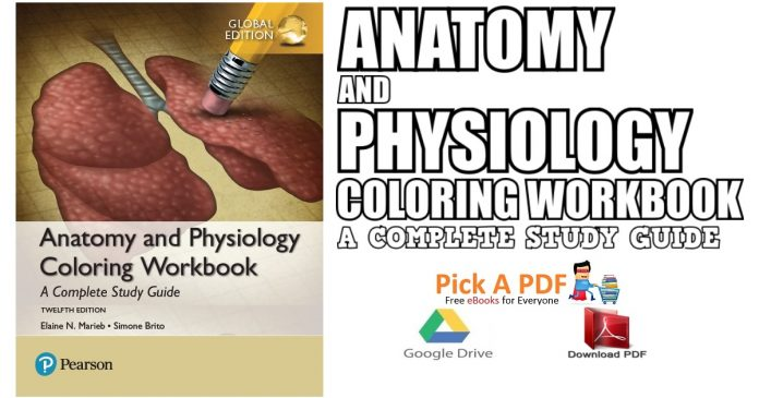 Anatomy and Physiology Coloring Workbook: A Complete Study Guide PDF