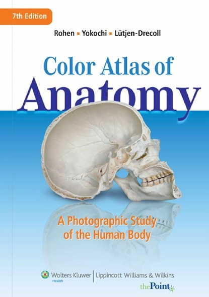 Color Atlas of Anatomy 7th Edition PDF